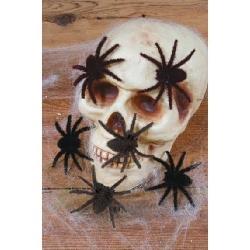 Novelty Halloween Decorations
