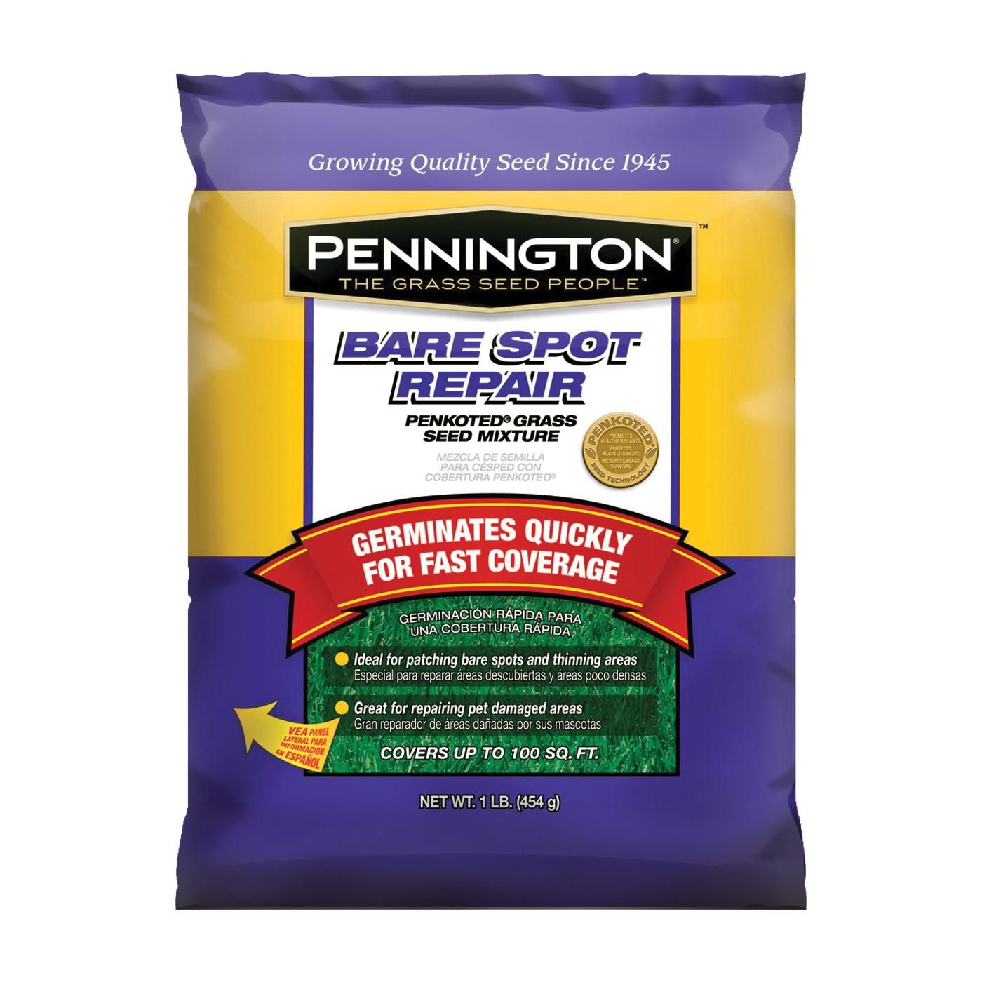 Pennington 100086239