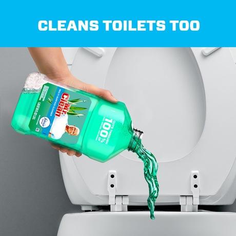MR CLEAN 75873