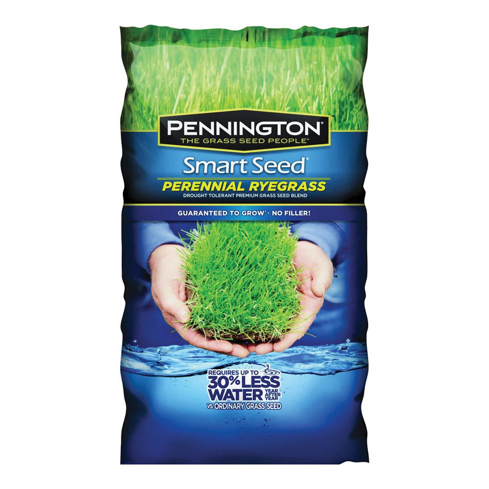 Pennington 100526658