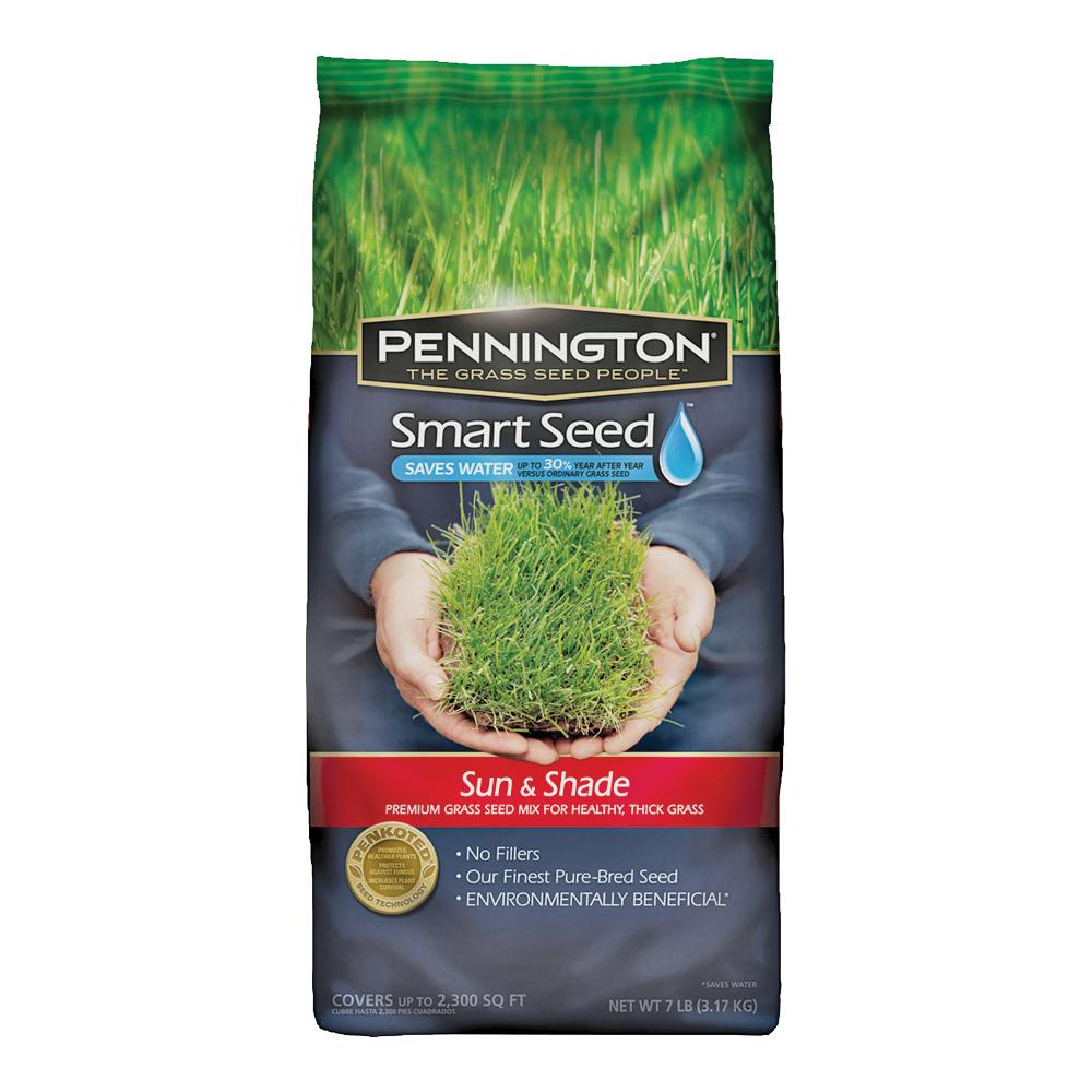 Pennington 100526671