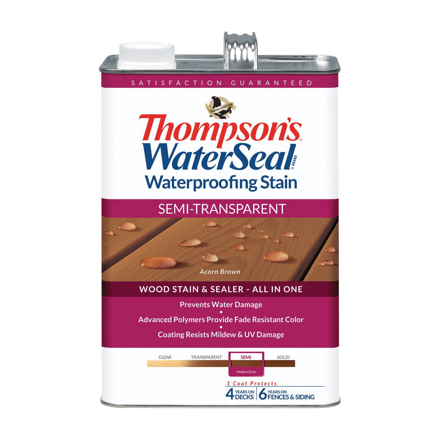 Thompson's Waterseal TH.042841-16