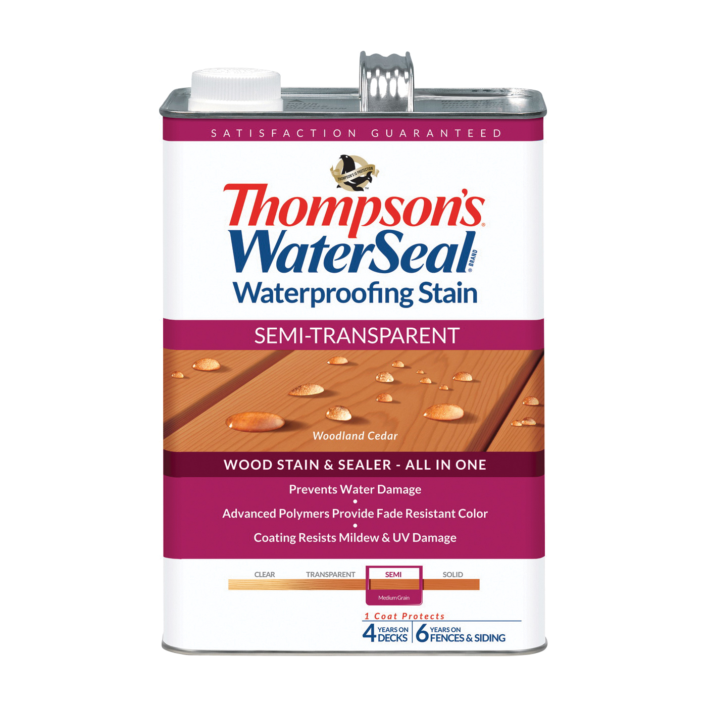 Thompson's Waterseal TH.042851-16