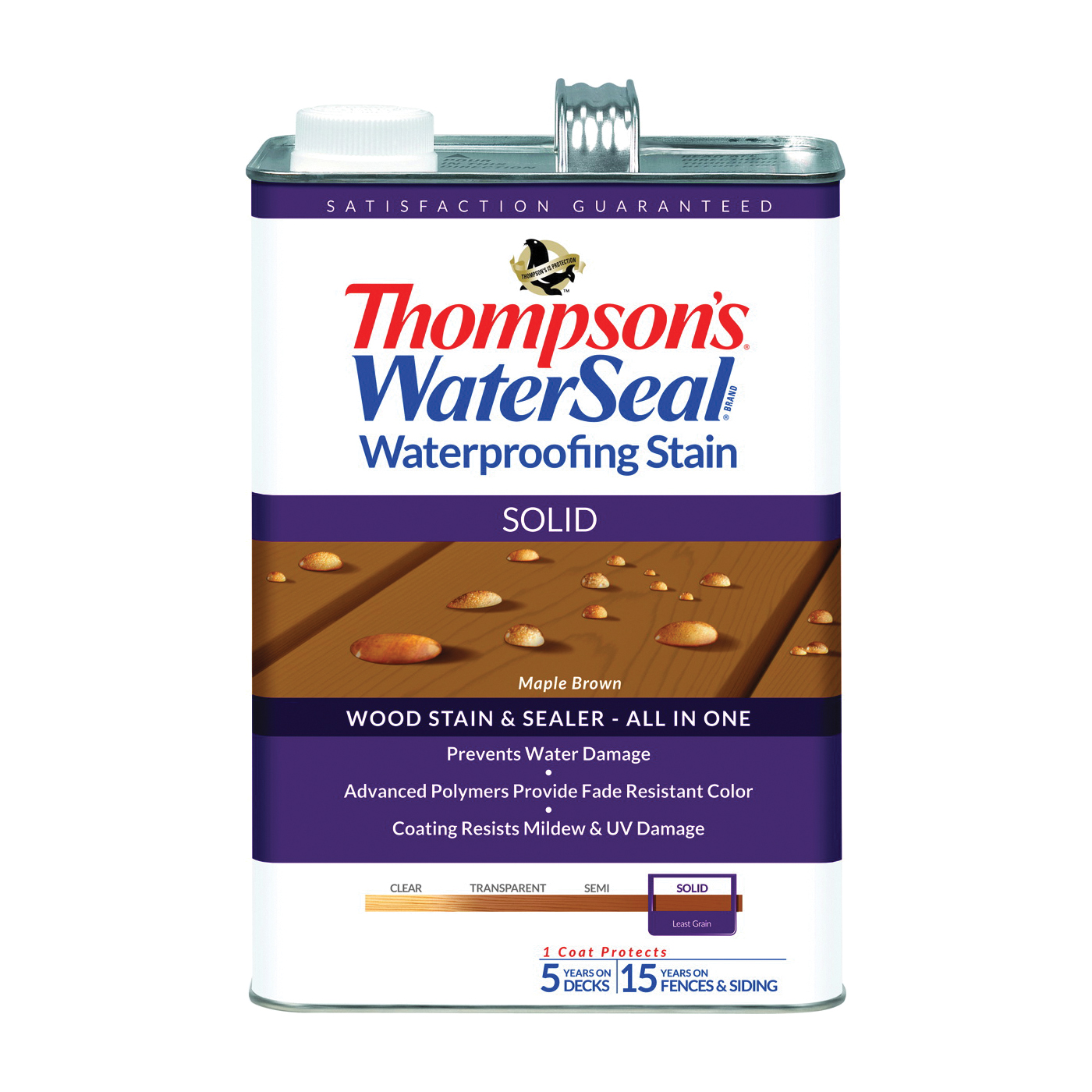 Thompson's Waterseal TH.043821-16
