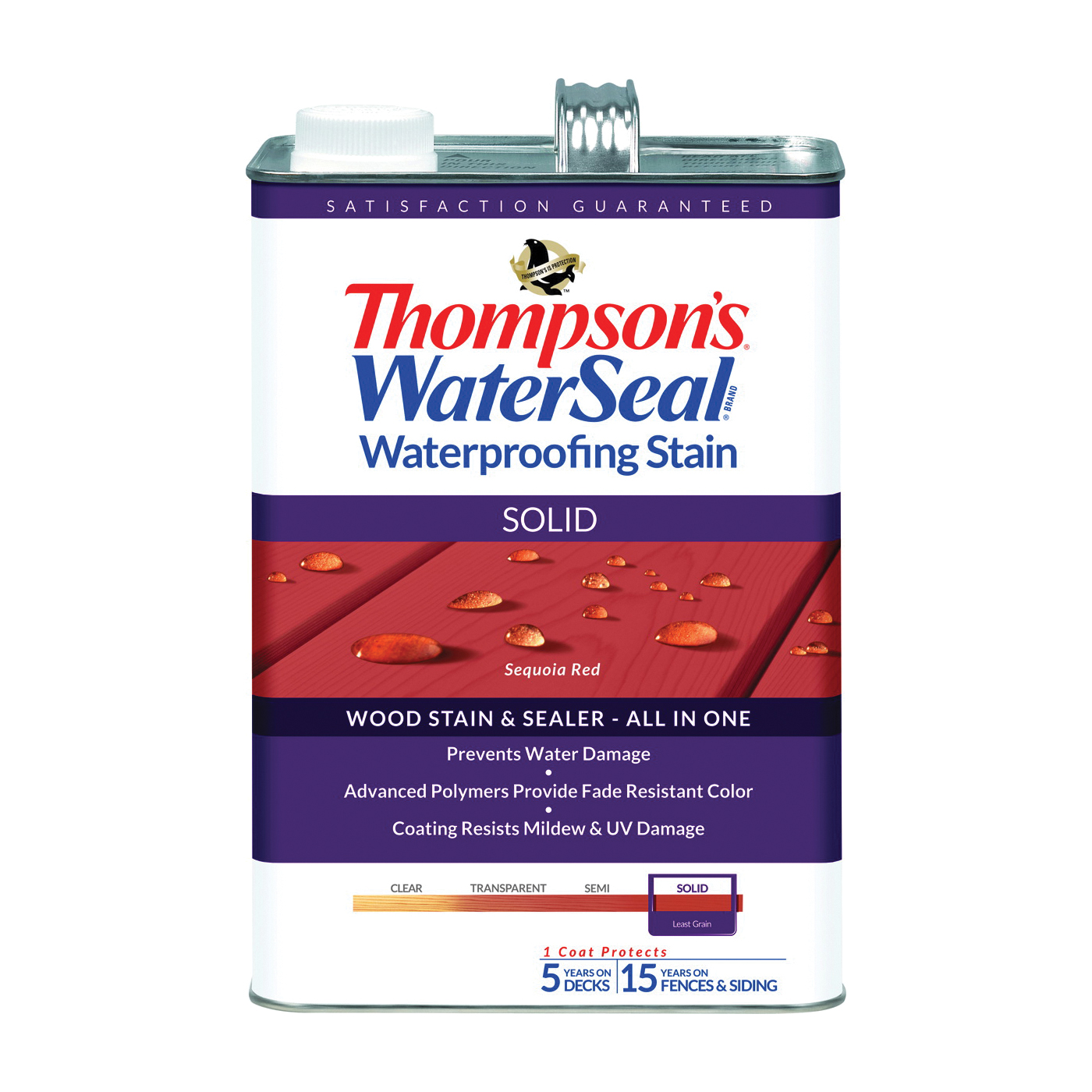 Thompson's Waterseal TH.043831-16