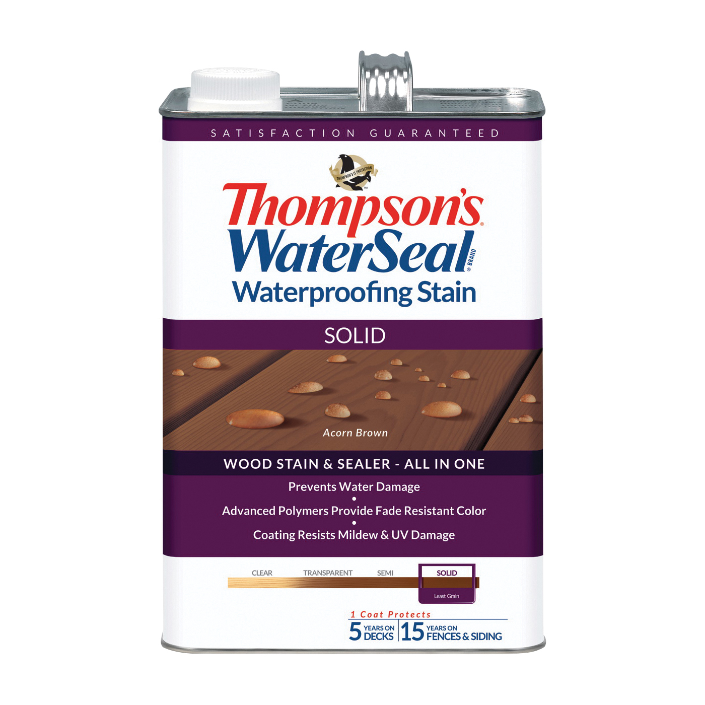 Thompson's Waterseal TH.043841-16
