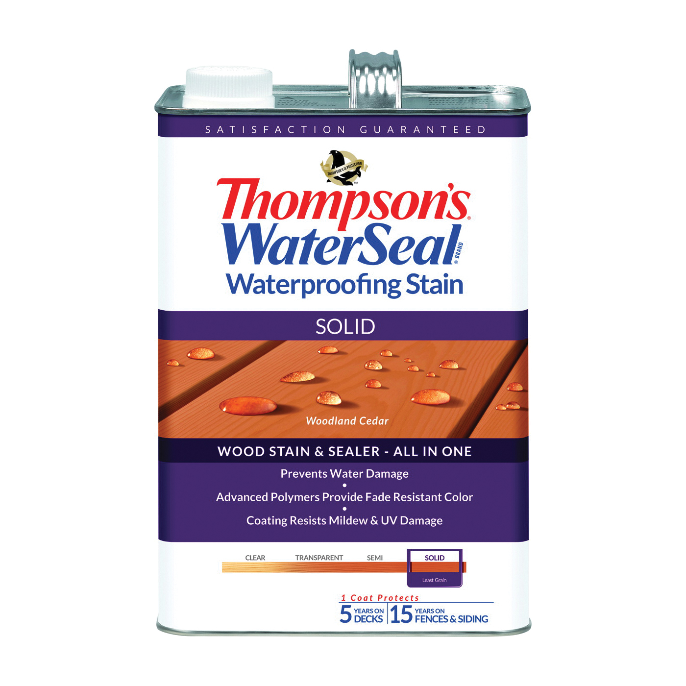 Thompson's Waterseal TH.043851-16