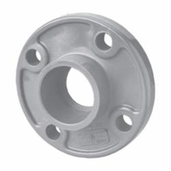 CPVC One Piece Flanges