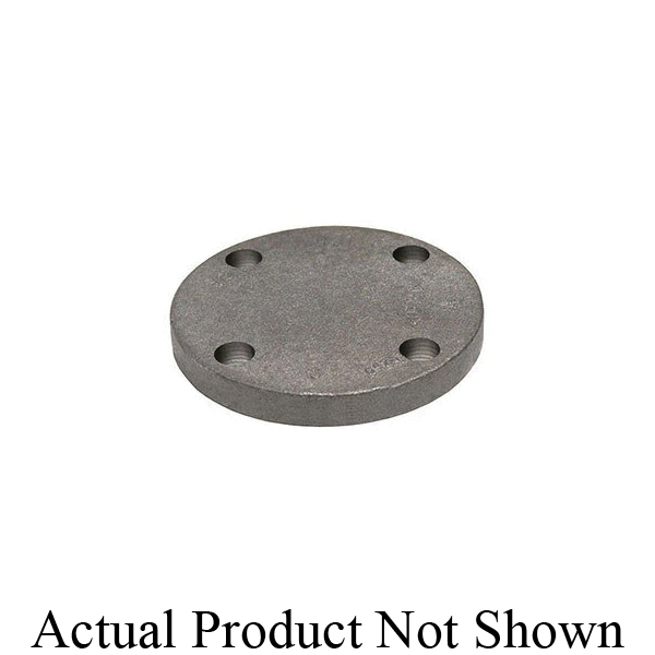 Anvil® 0308016005 FIG 1018 Blind Flange, 2 in, Cast Iron, IPS