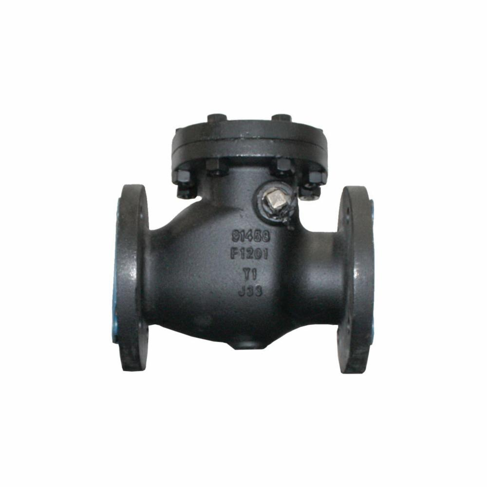 CRANE® 373-3 Swing Check Valve, 3 in, Flanged, 125 lb, Cast Iron Body