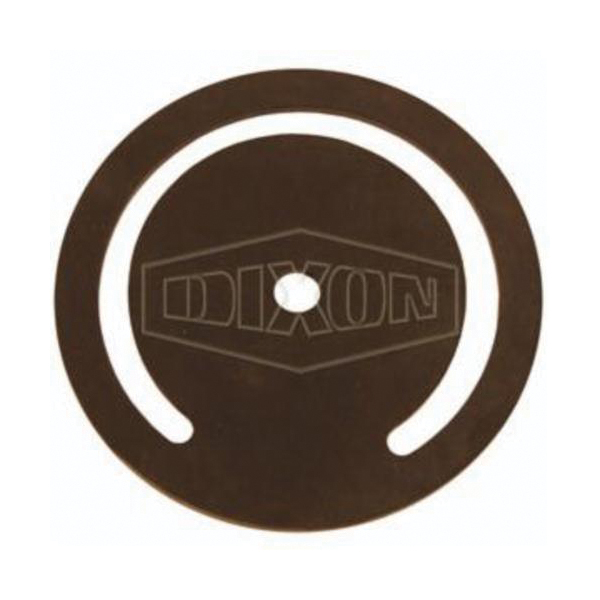 Dixon® DFVS35 Foot Valve, 3 in, FNPT, Cast Iron Body