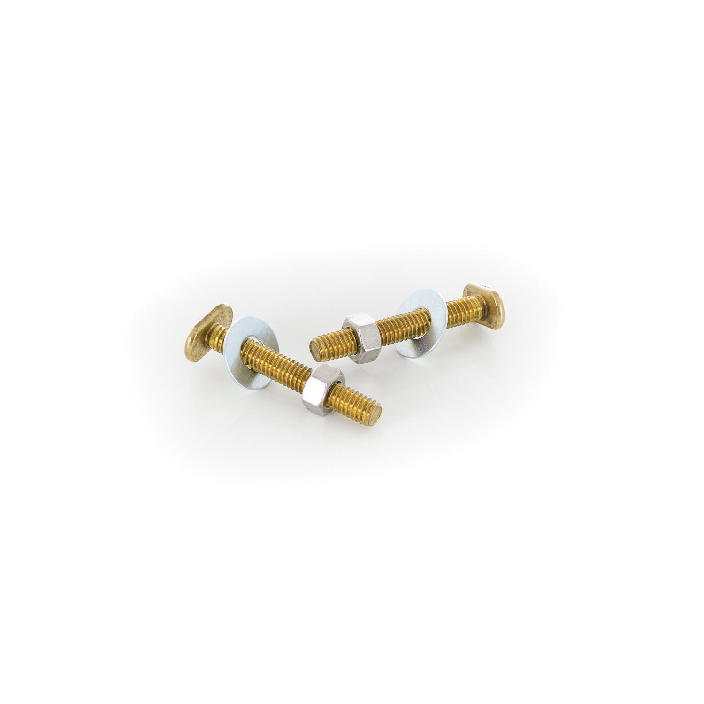 PASCO 82 Closet Bolt Set, 5/16 in x 2-1/4 in L Thread, Brass