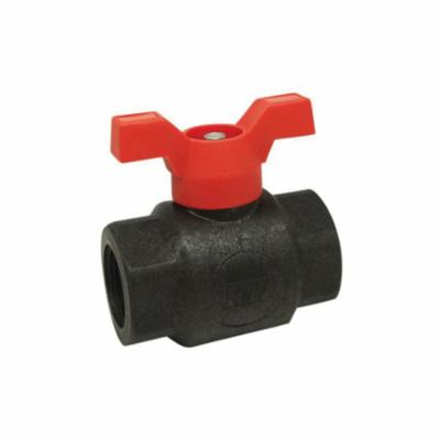 RWV® 5071PP 1/2 1-Piece Standard Quarter-Turn Ball Valve, 1/2 in Nominal, Threaded End Style, Polypropylene Body, Full Port, NBR Softgoods