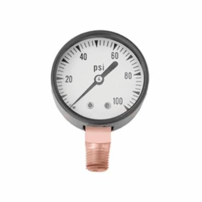 Simmons 1300 Import Liquid Filled Pressure Gauge, 0 to 100 lb, 1/4 in Connection, 2 in Dial