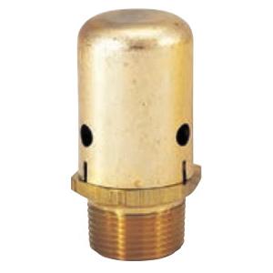 Bell & Gossett 113075 Vacuum Breaker, 3/4 in, MNPT, 240 psig, 300 deg F, Brass